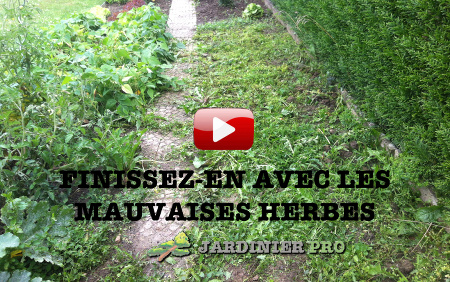 formation mauvaises herbes